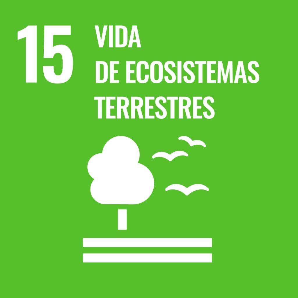 Vida dde Ecosistemas terrestres